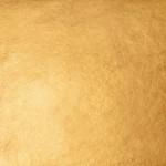 23.50kt-Dukaten-Orange-XX Gold-Leaf Patent-Book